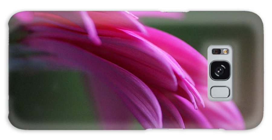 Pink Galaxy S8 Case featuring the photograph Daisy Petals by Carol Lynch