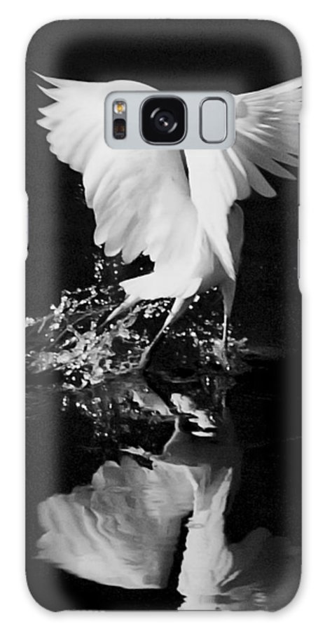 Bird Galaxy S8 Case featuring the photograph Dancing Feathers by Jaime Crosas