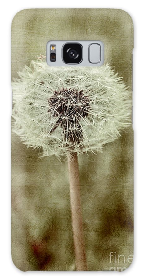 Dandelion Seedhead Galaxy S8 Case featuring the photograph Dandelion Textures by Ann Garrett