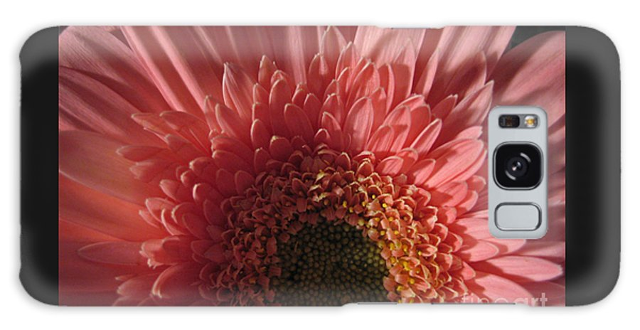 Flower Galaxy Case featuring the photograph Dark Radiance by Ann Horn