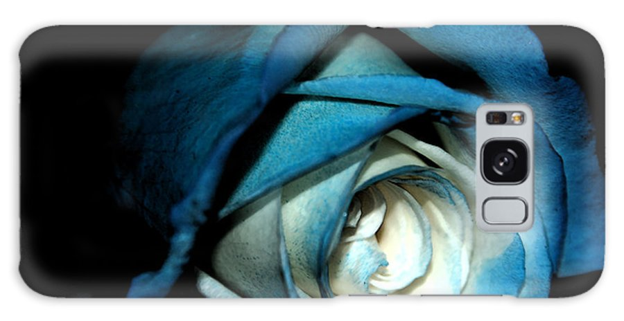 Blue Rose Galaxy S8 Case featuring the photograph Dark Rose by Katherine Forrester
