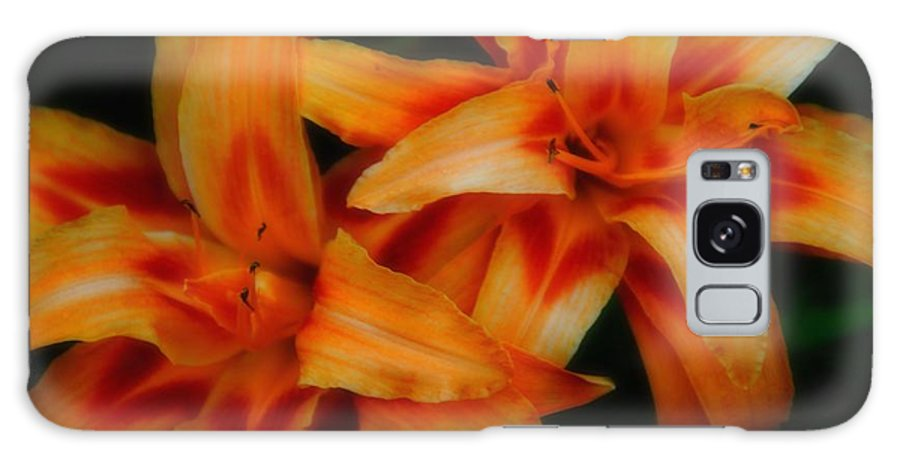Flowers Galaxy S8 Case featuring the photograph Day Lilies In Soft Focus by Brian Druggan