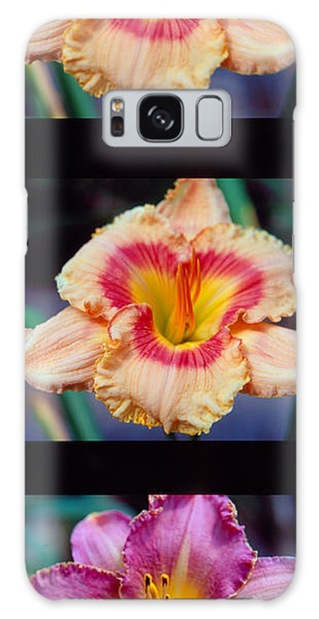 Day Lilly Galaxy S8 Case featuring the photograph Day Lilly 02 by George Ferrell