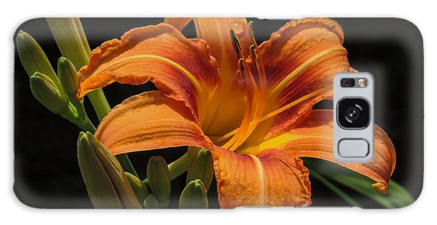 Nature Galaxy S8 Case featuring the photograph Day Lily by Robert Mitchell