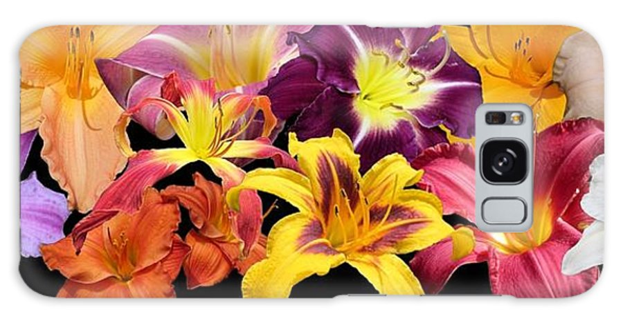 Daylily Galaxy S8 Case featuring the photograph Daylily Banner by MTBobbins Photography