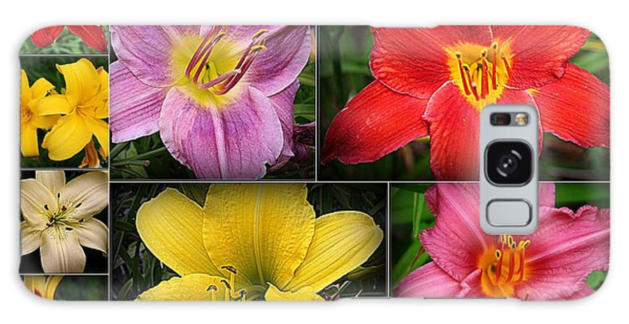 Lilies Galaxy S8 Case featuring the photograph Daylily Days by Dora Sofia Caputo Photographic Design and Fine Art