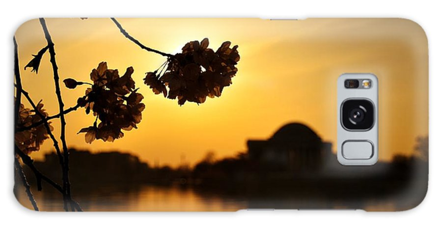 Washington Galaxy S8 Case featuring the photograph Dc In Bloom V by Shahak Nagiel