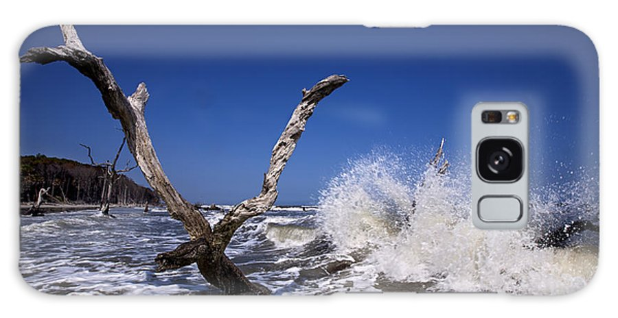 Dead Galaxy S8 Case featuring the photograph Dead Tree Splash by Mic Smith
