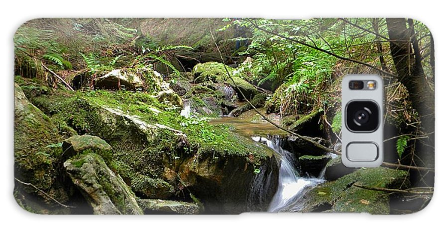 Creek Galaxy S8 Case featuring the photograph Deep In The Woods by Anthony Thomas