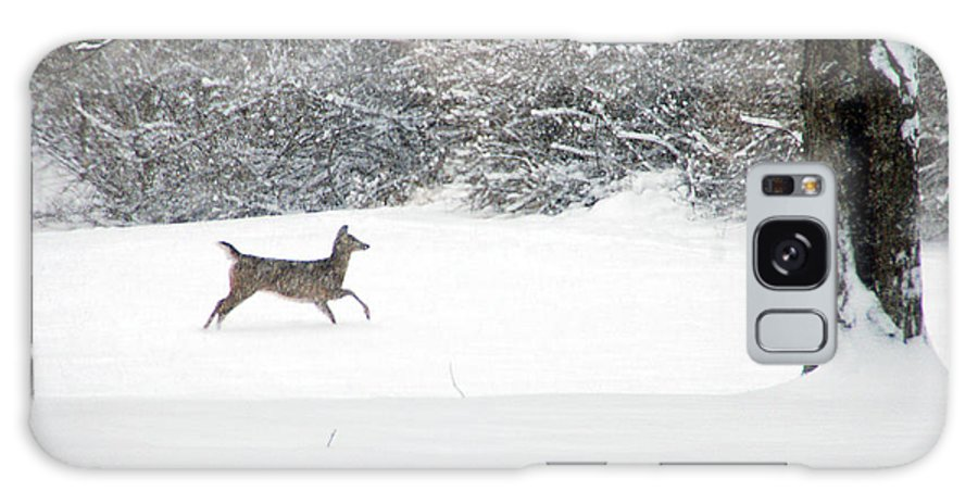 Deer Galaxy S8 Case featuring the photograph Deer Running by Aimee L Maher ALM GALLERY