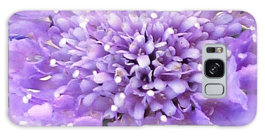 Flower Galaxy S8 Case featuring the photograph Delicate Purple by Lovina Wright