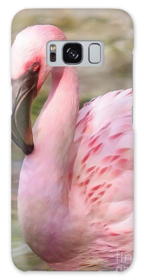 Flamingo Galaxy S8 Case featuring the photograph Demure Flamingo - Digital Art by Carol Groenen