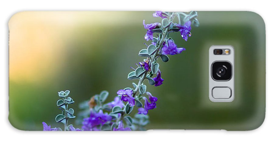 Flowers Galaxy S8 Case featuring the photograph Dew On Fower by Hugh Mobley