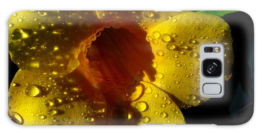 Patzer Galaxy S8 Case featuring the photograph Dew Trumpet by Greg Patzer