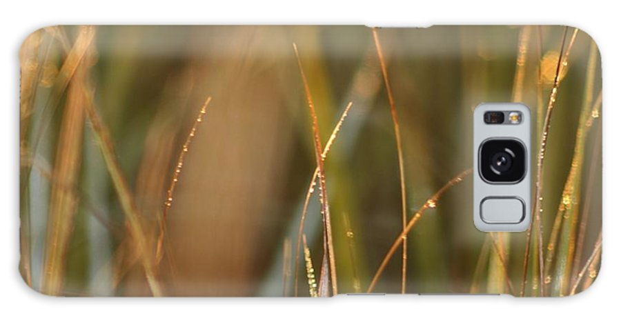 Dew Galaxy S8 Case featuring the photograph Dewy Grasses by Nadine Rippelmeyer