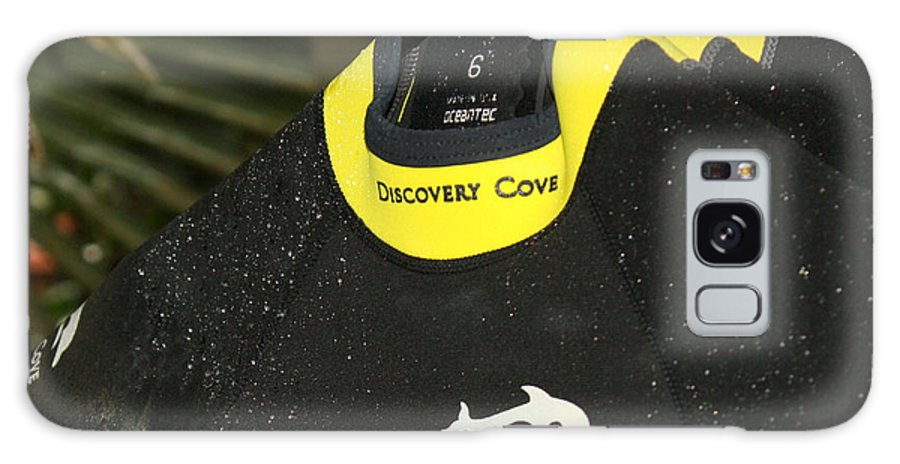 Discovery Cove Galaxy S8 Case featuring the photograph Discover Paradise by David Nicholls