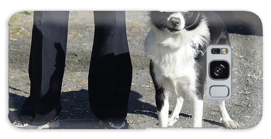 Dog And Friend Galaxy S8 Case featuring the photograph Dog And True Friendship 9 by Teo SITCHET-KANDA