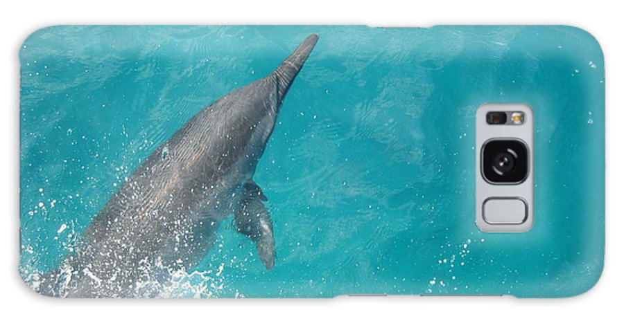 Dolphin Galaxy S8 Case featuring the photograph Dolphin Jump by Angela Rose