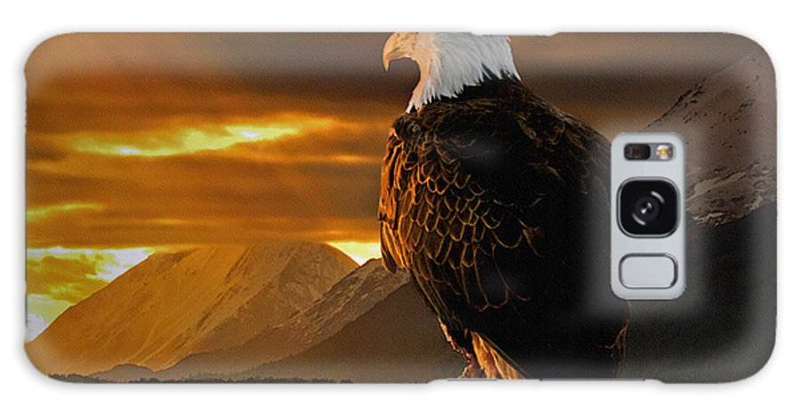 Eagle Galaxy S8 Case featuring the photograph Domain by Ron Day
