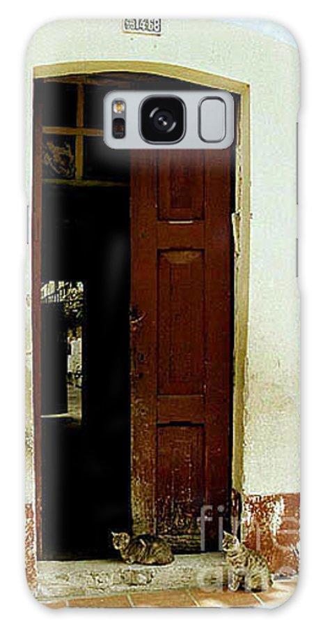Cats Galaxy S8 Case featuring the photograph Dos Puertas Con Dos Gatos by Kathy McClure