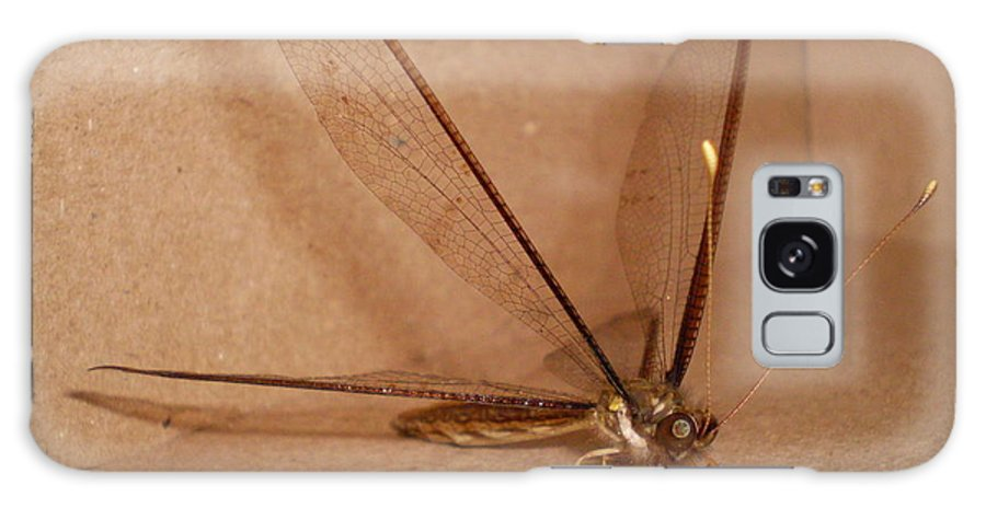 Dragonfly Galaxy Case featuring the photograph Dragonfly by Florentina De Carvalho