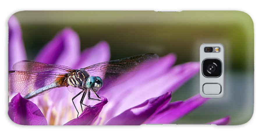 Dragonfly Galaxy S8 Case featuring the photograph Dragonfly Macro On A Water Lily by Brandon Alms