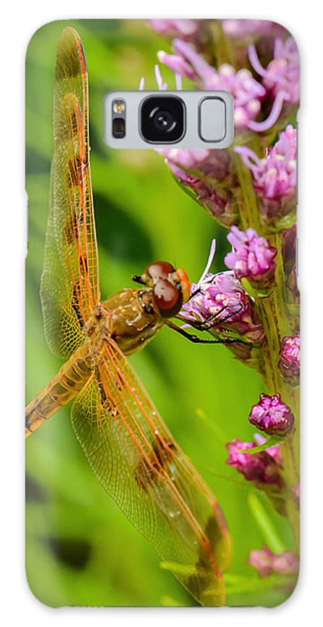 Nature Galaxy S8 Case featuring the photograph Dragonfly On Liatris by Robert Mitchell
