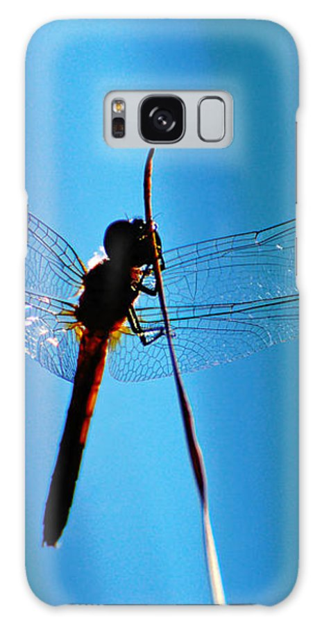 Dragonfly Galaxy S8 Case featuring the photograph Dragonfly Silhouette by Jean Booth