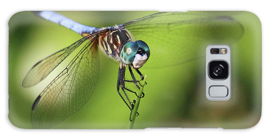 Dragonfly Galaxy S8 Case featuring the photograph Dragonfly Square by Carol Groenen