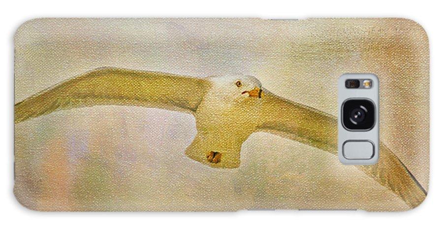 Seagull Galaxy S8 Case featuring the photograph Dream World Seagull by Deborah Benoit