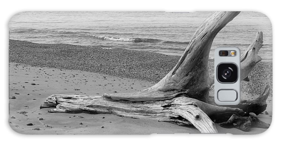 Black And White Galaxy S8 Case featuring the photograph Driftwood by Amy Imperato