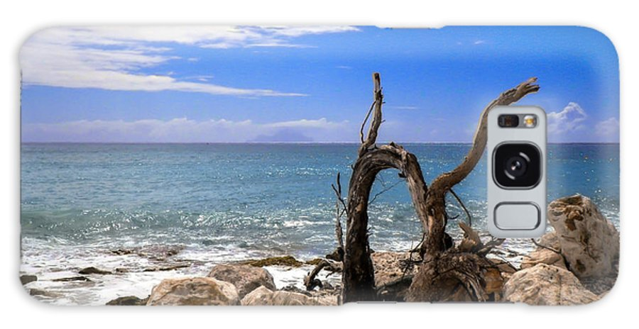 Driftwood Galaxy S8 Case featuring the photograph Driftwood Island by Karen Wiles
