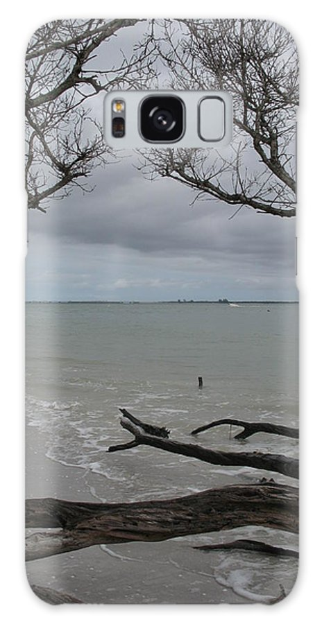 Beach Galaxy S8 Case featuring the photograph Driftwood On The Beach by Christiane Schulze Art And Photography