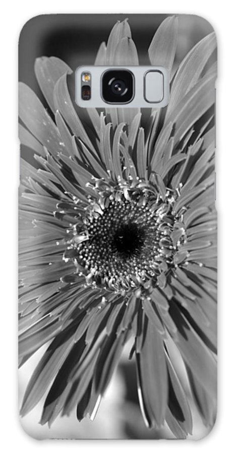 Gerber Galaxy S8 Case featuring the photograph Dsc753d1 by Kimberlie Gerner
