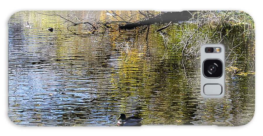 Galaxy S8 Case featuring the photograph Duck On Pond by Nick Peters