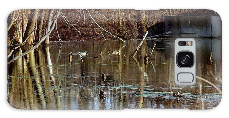 Mallard Galaxy S8 Case featuring the photograph Ducks On A Pond by Karen Adams