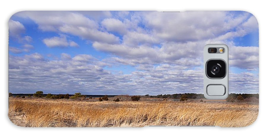 Dune Grass Galaxy S8 Case featuring the photograph Dune Grass And Clouds by Allan Morrison