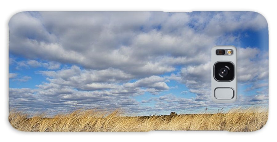 Clouds Galaxy S8 Case featuring the photograph Dune Grass And Sky by Allan Morrison