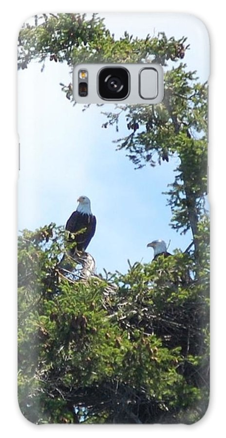 Eagles Nest Galaxy S8 Case featuring the photograph Eagles Nest by Katy Noun