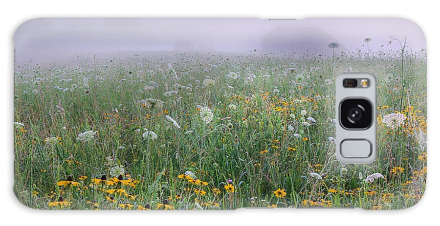 Flowers Galaxy S8 Case featuring the photograph Early Morning Meadow by Wanda Krack