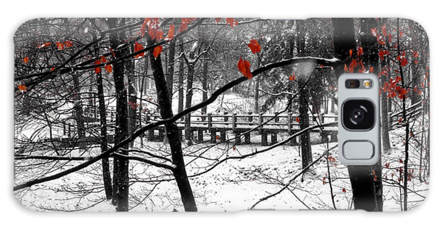 Indiana University Bloomington Bridge Bridges Tree Trees Red Leaves Leaf Snow Landscape Landscapes Digital Art Galaxy S8 Case featuring the photograph Early Snow 4 by Bob Phillips