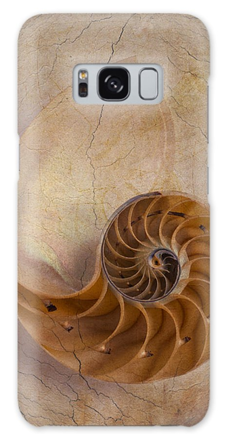 Earthy Galaxy S8 Case featuring the photograph Earthy Nautilus Shell by Garry Gay
