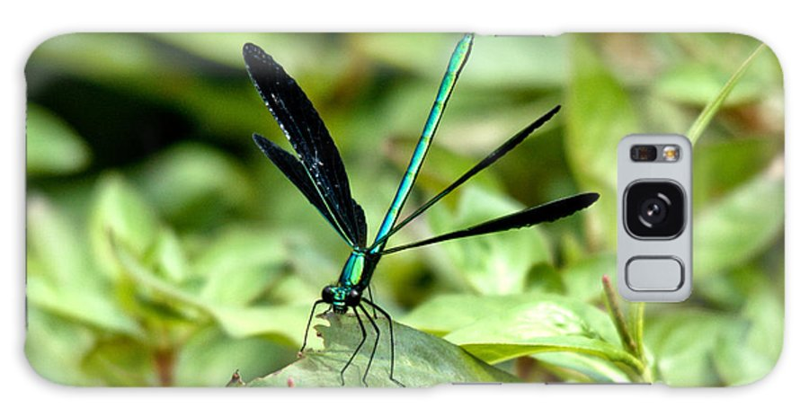 Ebony Jewelwing Galaxy S8 Case featuring the photograph Ebony Jewelwing by Cheryl Baxter