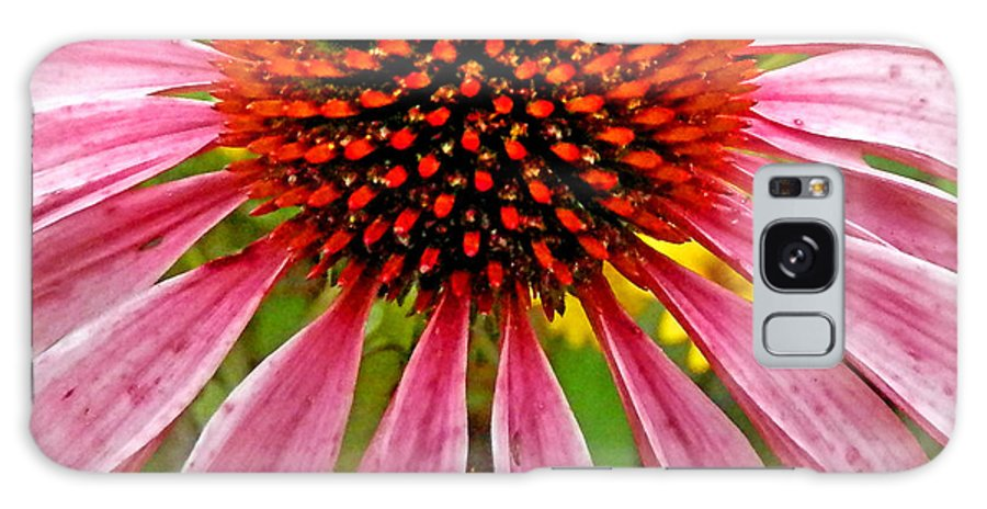 Duane Mccullough Galaxy S8 Case featuring the photograph Echinacea Flower Upclose Filtered by Duane McCullough