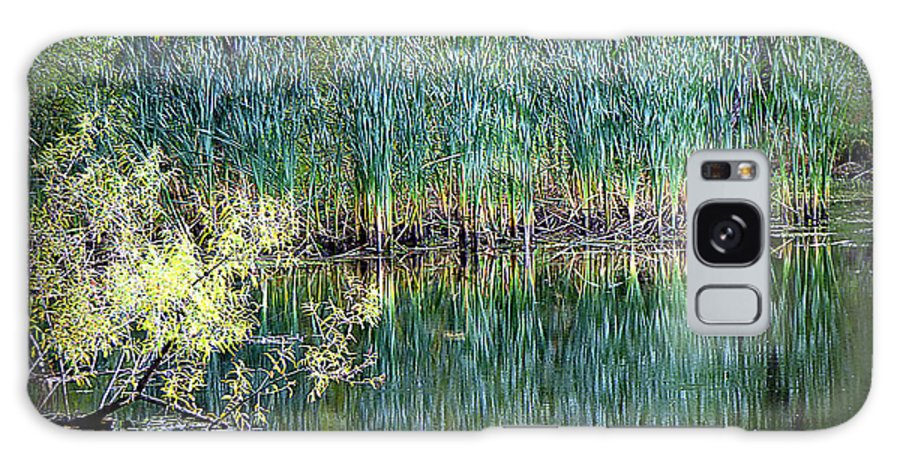 Landscape Galaxy Case featuring the photograph Edge Of Reflections by Rennae Christman