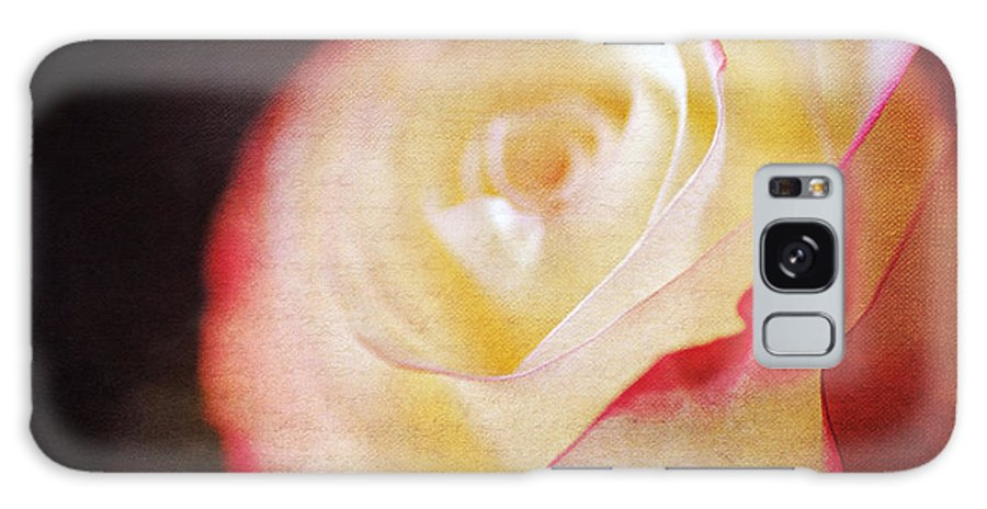 Beautiful Galaxy S8 Case featuring the photograph Elegant Rose by Darren Fisher