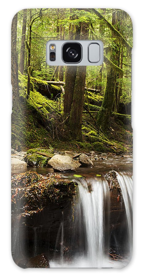 Forest Galaxy S8 Case featuring the photograph Elemental by Belinda Greb