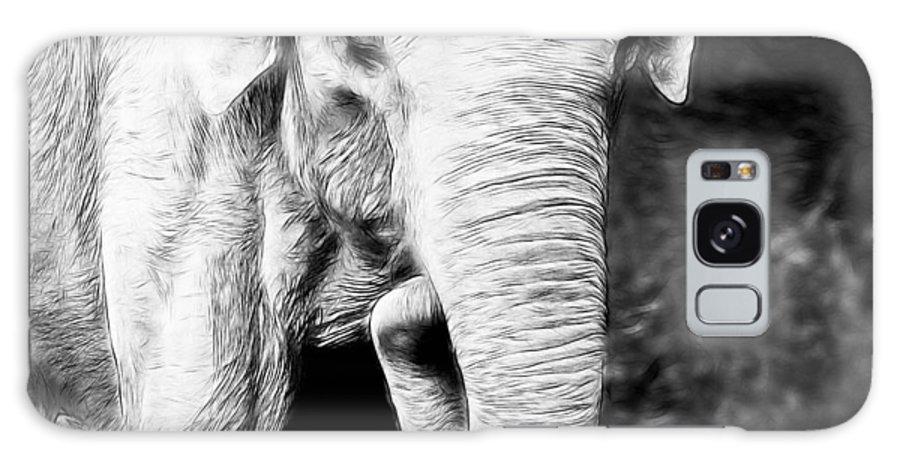 Elephant Galaxy S8 Case featuring the photograph Elephant IIi by Athena Mckinzie