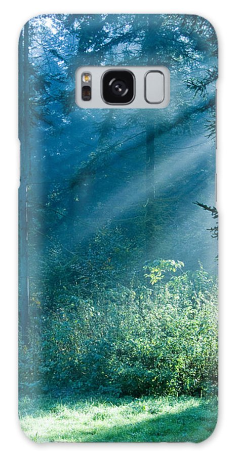 Nature Galaxy S8 Case featuring the photograph Elven Forest by Daniel Csoka