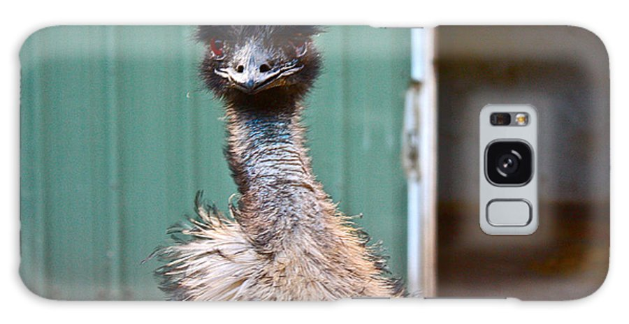 Emu Galaxy S8 Case featuring the photograph Emu by Carol Tsiatsios